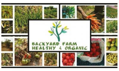 Backyard Farm Healthy & Organic