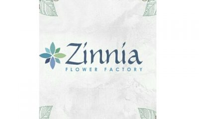 Zinnia Wedding & Event Planner – Seuodi Building