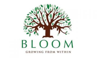 Bloom – 6th of October